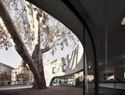12_TreeHugger_-_MoDusArchitects_©Oskar_Da_Riz.jpg