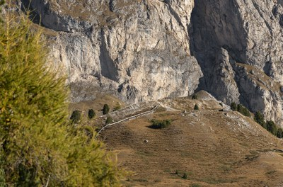 0722-Messner-Architects-Mastle-Lookout-10.jpg