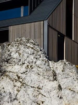 z-house-geza-alpine-mountain-camporosso-italy-_dezeen_2364_col_6.jpg