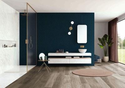 Hexa_deep_Navy_Bathroom_03.jpg